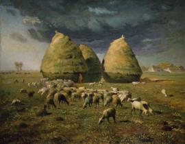 Millet, Hooibergen