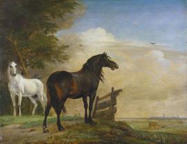 Potter, Paarden in de wei