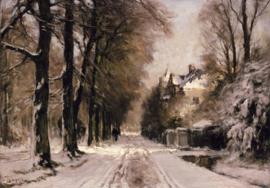 Apol, Boslaan in wintertooi