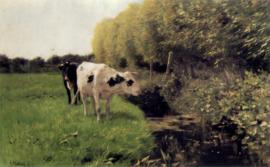 Mauve, Koeien aan een sloot