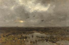 Mauve, Het moeras