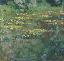 Monet, Waterleliebekken