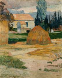 Gauguin, Boerderij in Arles