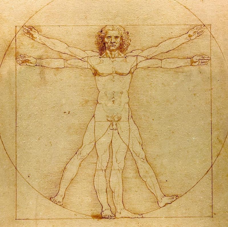 Da Vinci, De vitruviusman