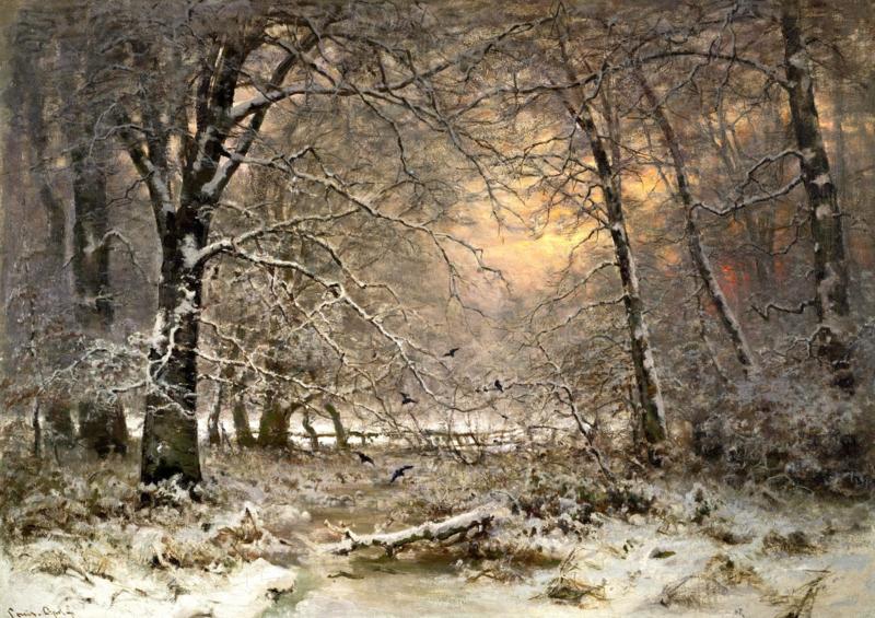 Apol, Bos bij winter