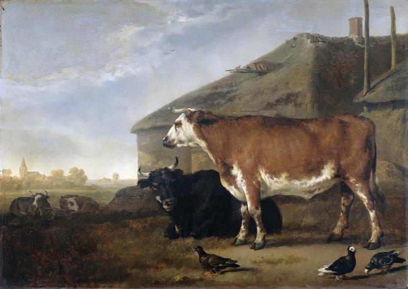 Cuyp, Twee ossen bij een boerderij