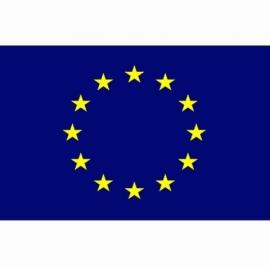Europese vlag Polyester -  1 x 1,5 meter