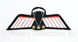 Zeldzame originele Parawing C-OPS (vrije val)  DT 2000 - 11 x 4 cm - origineel