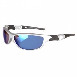 Biker zonnebril - zilver/blauw (nr.40)