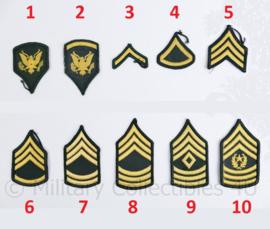 US Army Vietnam oorlog rang emblemen paar DAMES - origineel