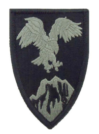 US Army Foliage patch - Afghanistan Combined Forces Command - met klittenband - voor ACU camo uniform - origineel