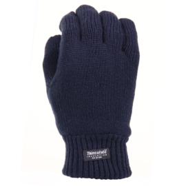 Handschoenen met warme Thinsulate voering - Blauw