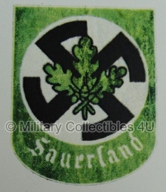 Sauerland decal - 3-074