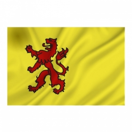 Provincie vlag Zuid-Holland - Polyester -  1 x 1,5 meter
