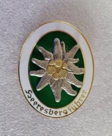 HeeresBergführer gebirgjäger insigne metaal  edelweiss - voor uniform