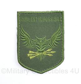 Oekraïense leger embleem - NIHIL EST IMPOSSIBLE - met klittenband - 9 x 7  cm - origineel