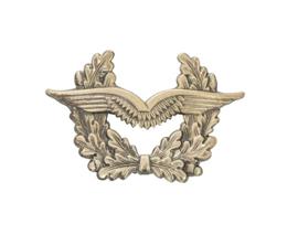 BW Bundeswehr Luftwaffe schirmmütze pet insigne - 7,5 x 4,6 cm - origineel
