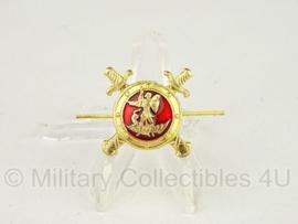Russisch metalen petembleem Russische symbool met zwaarden - origineel