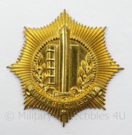 Gemeente Politie te water pet insigne - doorsnede 5 cm - mist pin achterzijde - origineel