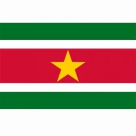 Vlag Suriname - Polyester -  1 x 1,5 meter