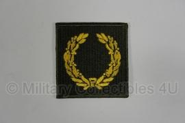 Meritious Service Unit badge patch