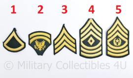 US Army Vietnam oorlog rang emblemen PAAR - origineel