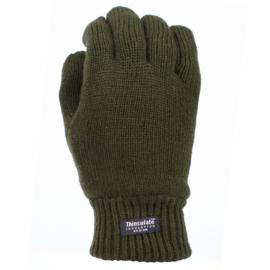 Handschoenen met warme Thinsulate voering - Groen