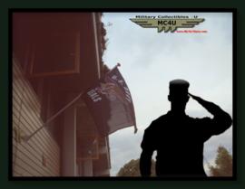 US Army vlag