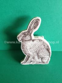 Puntenslijper Bunny