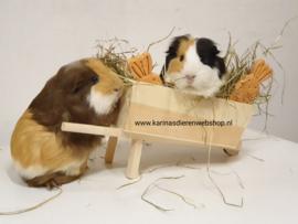 Hooi Ruif Voer Bak KRUIWAGEN inclusief zak kruidenhooi/2 wortels