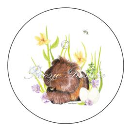 Sticker / sluitzegel Cavia Muffin ( 4 stuks)