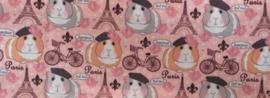 Anti plas Deken  ......  Cavia print PARIS