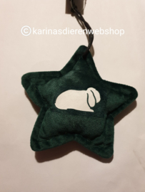 Kerst Ornament Ster hangoor konijn groen