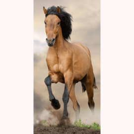 Strandlaken Badlaken Paard bruin