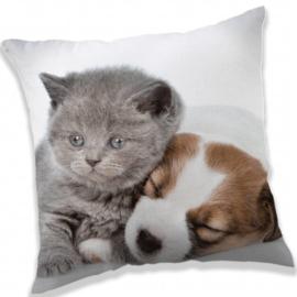 Puppy and Kitten - Sierkussen - 40 x 40 cm - Grijs