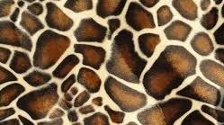 hangmat Velboa Giraffe op=op