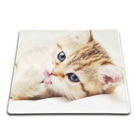 Muis mat computer Kat Kitten