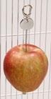 Fruitprikker