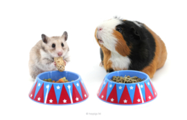 HayPigs!® Junior Food Tamer™ - Mini Food Bowl | mini voerbak Circus