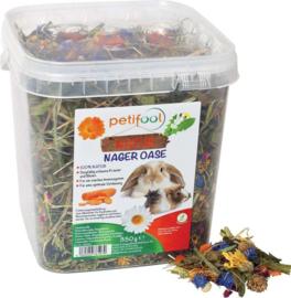 PETIFOOL Nager oase/ Knaagdier Oase 350 gram