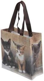 Boodschappentas kittens