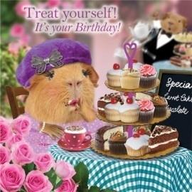 6 onderzetters Tea and Cake ( cavia print)