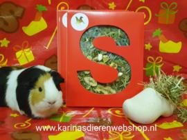Sinterklaas Letter voor je knaagdier en konijn (A)