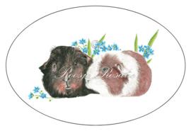 Grote Sticker / sluitzegel cavia's Archie & Blessing