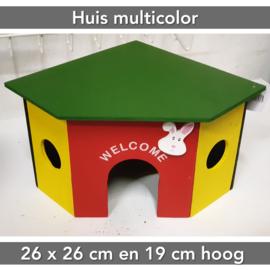 Huis Multicolor
