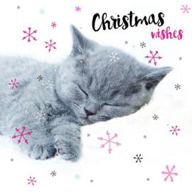 Kerstkaart Kitten Lux Snoozing 10 stuks 2 soorten