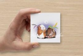 Cadeau kaartje Cavia Pieten Olivia & Muffin