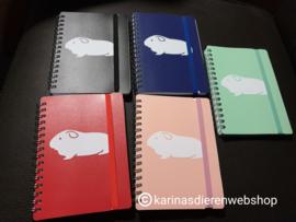 Notitieboekje cavia blauw