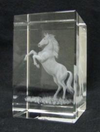 3D Laser Gravure Paard