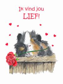"""Valentijnskaart """"BenBen"""" Cavia"""
